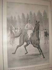 Elliman Horse Racing jockey art advert July 1902 print ref AW