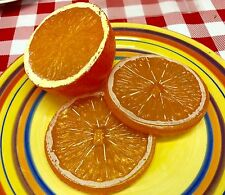 Realistic Artificial Faux Fake Food Replica Citrus Fruit HALF ORANGE SLICES PROP