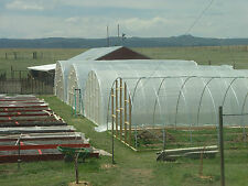NEW 20 X 60 fT. GREENHOUSE KIT! Commercial ! 10 ft Ceiling ! Free Shipping T-T