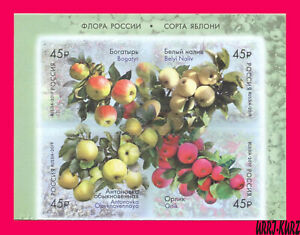 RUSSIA 2019 Nature Flora Fruits Apples Imperforated Selfadhesive block of 4v MNH