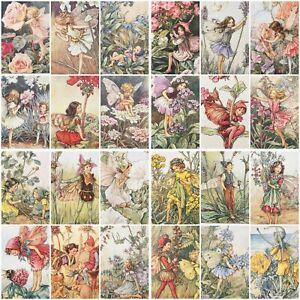 Flower Fairy Postcards Cicely Mary Barker - 51- 76 - Choose Fairies From List