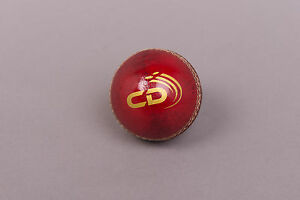 Cricket Dynamics Attack Ball