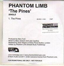 (CP727) Phantom Limb, The Pines - 2011 DJ CD