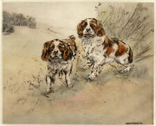 CAVALIER KING CHARLES SPANIEL LIMITED EDITION PRINT ENGRAVING Henry Wilkinson