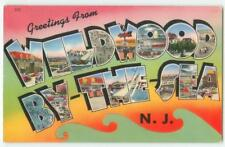 Wildwood By the Sea NJ Greetings Large Letter 1958 Antique Postcard 25101