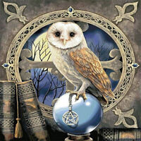 Full drill 5D Diamond Painting Cartoon Owl Magic Ball Fashion Handicraft 6526X