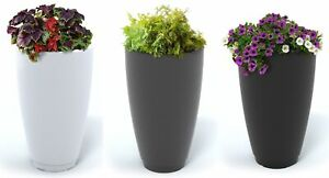 Modern Tall Flower Planter in 3 Colors 26In x 16In