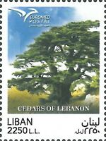 Lebanon NEW 2017 MNH Lebanese Cedar Tree Joint Issue between Euromed Countries
