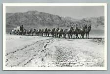 20 Mule Team~Borax Wagon Train DEATH VALLEY Vintage RPPC Photo Frashers 1940s