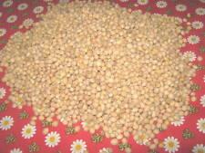 5 kg Kirschkerne für Kirschkernkissen Wärmetherapie NEU