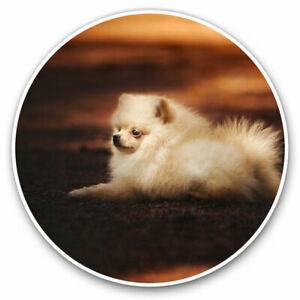 2 x Vinyl Stickers 30cm - Cute Pomeranian Puppy Dog Cool Gift #2693