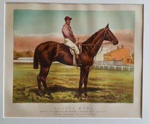 1898 Antique Horse Racing Print GALTEE MORE Winner of Derby 2000 Guin. St Leger