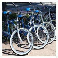 "Schwinn Classic SS Bike No 2 12""x12"" Fine Art Print, Bicycle Cycling Cityscape"