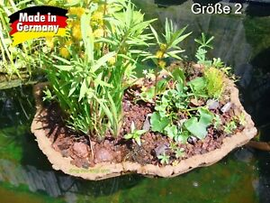 Teich Pflanzinsel Gr.2 - 30 x 60cm incl. 6 Pflanzen