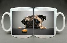 BELLISSIMO Pug biscotto per cani TAZZA REGALO regalo di compleanno DOGGY Carlino Carino Caffè