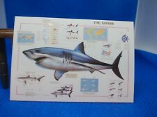 SHARK POSTER FOR A DOLLS HOUSE