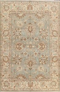Vegetable Dye Gray Floral Ziegler Oriental Area Rug Handmade Wool Carpet 9x12 ft