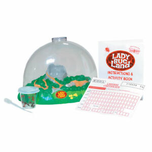 Insect Lore Products Ladybug Land