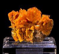 Wulfenite & Mimetite Fine Mineral Specimen - San Francisco Mine, Sonora, Mexico