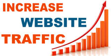 450,000 unique views for your website real human boost web traffic