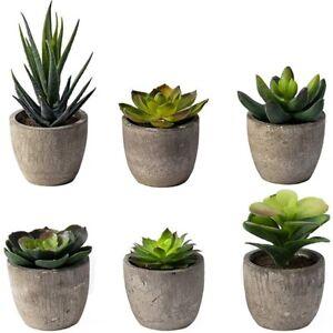 6 Pots Small Artificial Succulent Plants Mini Fake Faux Pot For Shelf Kitch M4L3
