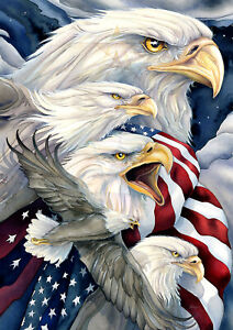 Toland Fly In Unity 28 x 40 Patriotic America Eagles   House Flag