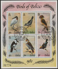 Belize (1766) - 1980 BIRDS sheetlet of  6 fine cto used