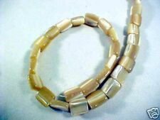 Gold MOP Trocca Shell 10mm Flat Square Bead Strands 16""