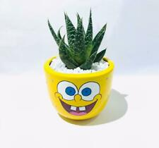 Hand-painted flower cactus clay pots set 2 Spongebob &Pooh characters table deco