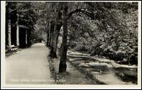 WILDBAD Schwarzwald ~1940/45 Baum Allee an der Enz, alte Postkarte
