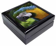 Blue+Gold Macaw Parrot Keepsake/Jewellery Box Christmas Gift, AB-PA10JB