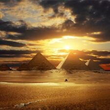 Landscape Scenic Backdrop Desert Pyramid Background Photography Studio Prop 8x8