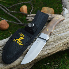 "Elk Ridge Burlwood Handle 8"" Fixed Blade Small Hunter Knife ER-107"