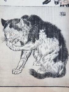 Superbe Livre Japon Illustre XIXe UKIYO-E 38 Estampes MYTHOLOGIE ANIMAUX CHAT
