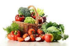 Kit potager Lot + de 800 graines Légumes et aromatique - seed plante Jardin J3