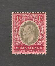 Somaliland Protectorate #41 VF MINT OG - 1905 1a King Edward VII - SCV $17.50