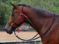 Bitless bridle/Riding halter adjustable sidepull red/black padding,PONY,COB,FULL