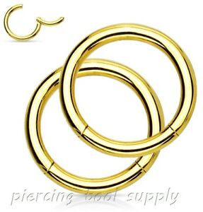 2x Hinged Seamless Segment Ring Surgical Steel Nose Hoop Earring Lip Septum Ring