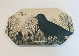 JOHN DERIAN For Threshold Feeling Peckish Bird Raven Octagonal Serving Platter