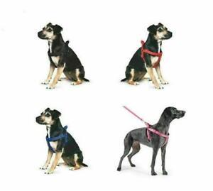 Dog Puppy HarnessAncol Nylon Padded  Reflective Stitching