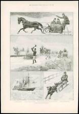 1890 antica stampa-Terranova Harbour per cani da slitta slitta Ghiaccio Taglio (127)