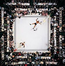 "Muhammad Ali - Boxing Poster ""24 x 24"" - NEW"