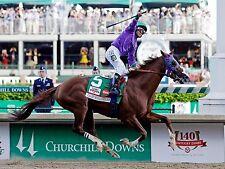 CALIFORNIA CHROME 2014 KENTUCKY DERBY WINNER HORSE RACE RACING 8X10 PHOTO #5