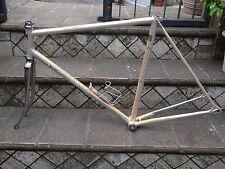 Vintage Colnago Junior colours Rabobank frame & fork