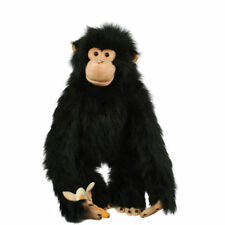 Unbranded Monkeys Branded Soft Toys