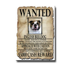 ENGLISH BULLDOG Wanted Poster FRIDGE MAGNET No 1 DOG
