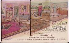 E L March Furniture & Carpets Rug Store LEXINGTON KY 1907 Advertising Postcard