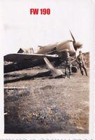 Flugzeug Jäger FW 190 Focke Wulf LW Luftwaffe   Russland 1943 #8