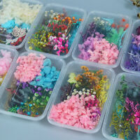 1 Box Dried Flower Hydrangea Package Aromatherapy Candle Resin Filling Epoxy DIY