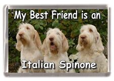 "Italian Spinone Dog Fridge Magnet ""My Best Friend is a ....... "" by Starprint"